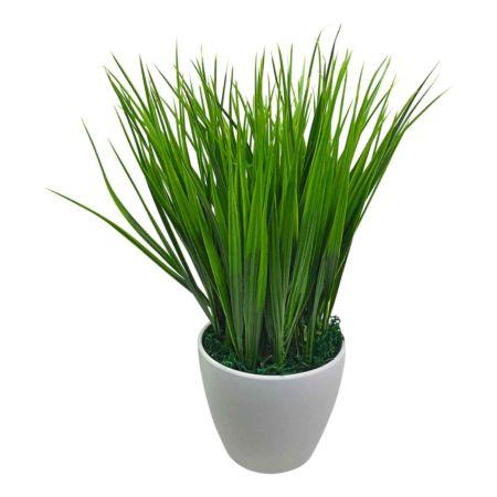 Grasbusch in Topf weiss 25cm