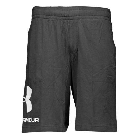 Under Armour Herren-Shorts Big Logo