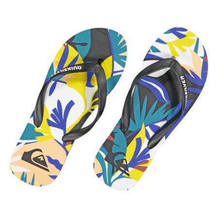 Quiksilver Herren-Flip Flop Molokai Tropical